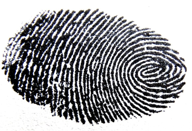 Photo: Fingerprint